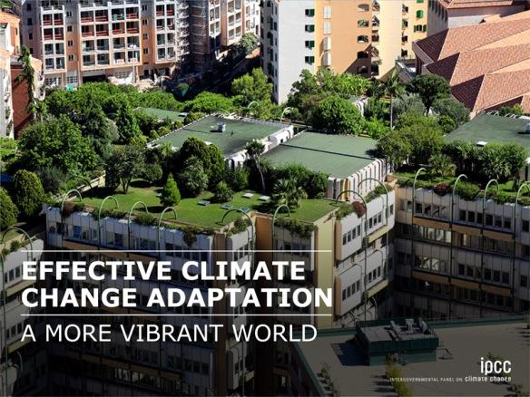 IPCC_WG2AR5 Slides 12
